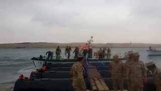 See the new Lion Suez Canal the moment he arrived on the island of Lynch Albulah