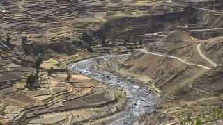 I Condor del Canyon del Colca (Perù)