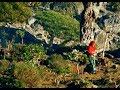 Socotra, The Island Of Dragon's Blood Tree
