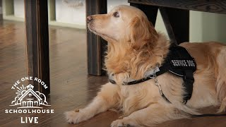 10/22/2020 - Service Dog Lesson - The One Room Schoolhouse LIVE