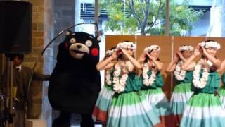 何をやっても器用☆くまモン可愛らしくフラダンスを踊る thumbnail