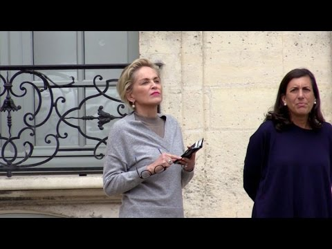 EXCLUSIVE: Sharon Stone goes to Picasso museum in Paris