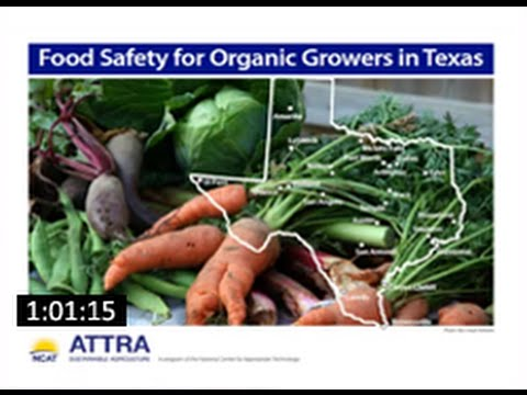 Food Safety for Organic Growers in Texas