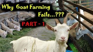 Ashwin Sawant | Why Goat Farming Fails...??? Part - 1