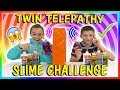 TWIN TELEPATHY SLIME CHALLENGE | WE PASSED! | We Are The Davises