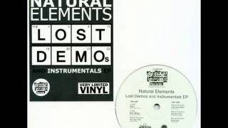 Natural Elements - I Got Your Heart (Instrumental)