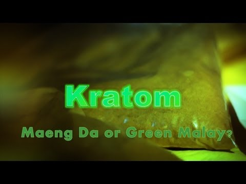 Kratom- Maeng Da or Green Malay?