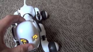 Zoomer Interactive Dog Toy Review by Baby Gizmo