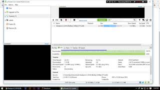 Is this the Fastest Download Speed in Torrent Classictech