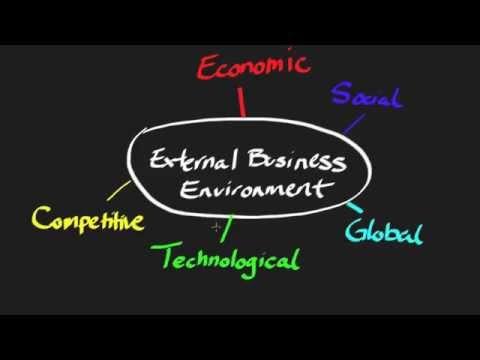 The External Business Environment