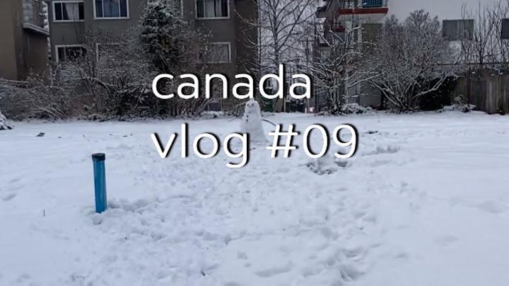 🇨🇦 캐나다 일상 브이로그 #9 | 밴쿠버의 겨울과 봄 일상 모음