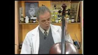 Химия 43. Растительные смолы. Сосновая канифоль — Академия занимательных наук