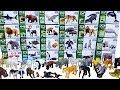 Lots of Zoo wild Animals,Sea animals Farm animals,Learn animals names video for kids 동물 장난감 이름