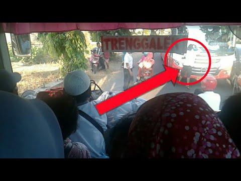 Viral !! Bus Harapan Jaya Diamuk Pengemudi Mobil