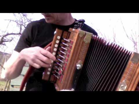 Accordéon music 9. Martin Cajun Squeezebox