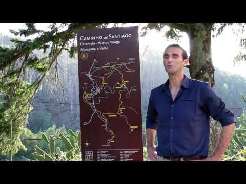 Álvaro Tavares -Candidato à Junta de Albergaria-a-Velha e Valmaior