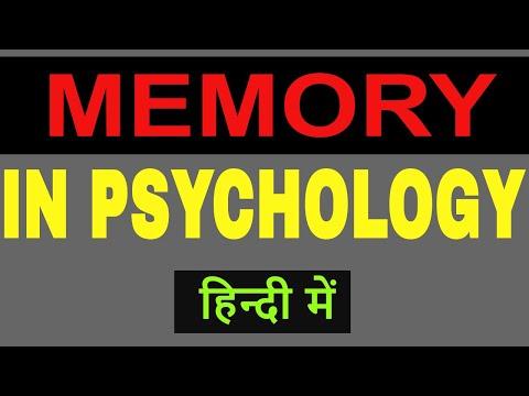 Memory In Psychology In Hindi