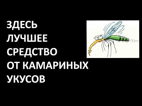 Лучшее средство от комариных укусов