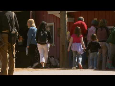 Asthma: What Brought on the Epidemic? KQED QUEST