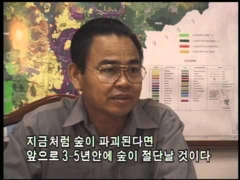 [다큐클래식] 아시아 리포트 83회-캄보디아 라타나기리, 투기꾼에 무너지는 땅 / Asia report #83-Ratanakiri, Kreung family, Cambodia
