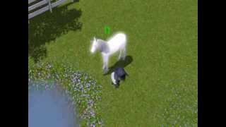 Les Sims 3 - Naissance d'un poulain licorne