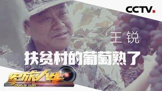 《军旅人生》 20190723 王锐 扶贫村的葡萄熟了  CCTV军事