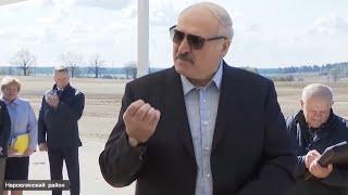 Лукашенко про карантин Да меня на вилы поднимут люди Коронавирус