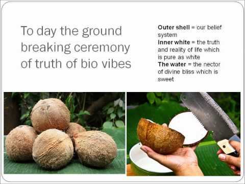 Human Bio Vibes - Ipoh (part 1)