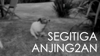 #31 Segitiga Anjing2an