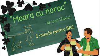 """""""Moara cu noroc"""" de Ioan Slavici"""