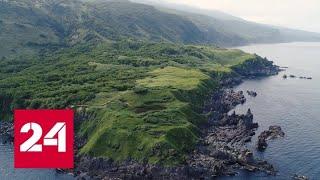 Смотреть видео Сахалин - остров контрастов. Специальный репортаж Марии Гладких - Россия 24 онлайн