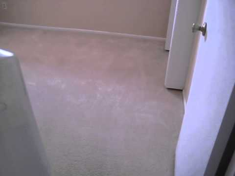 How To Clean Your Carpets Without Soap Using 11.5 High pH Water.