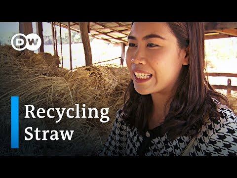 Thailand: Turning straw