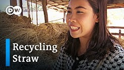 Thailand: Turning straw into gold   Global Ideas