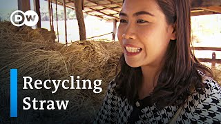 Thailand: Turning straw into gold | Global Ideas