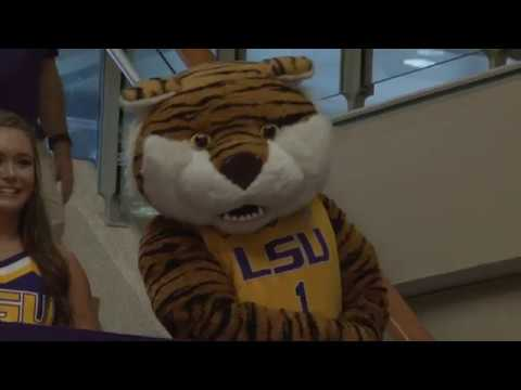 Students Excited for New LSU Basketball Coach Will Wade