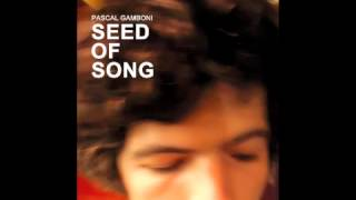 THE SHADOW OF THE WALL - Pascal Gamboni & Sun Gone Mad