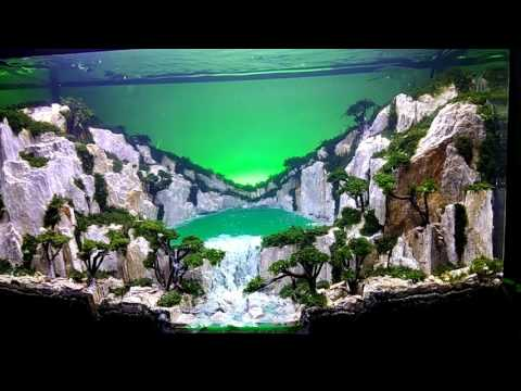 "Aquascape tema ""GREEN LAKE STYLE"""