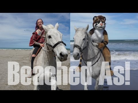 Beached As Horses + Riding In Fursuit!