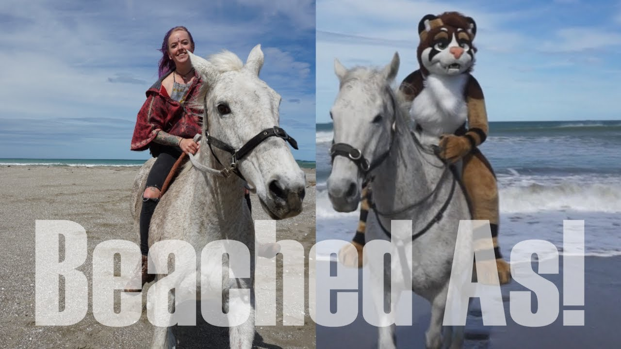 beached as horses + riding in fursuit! - youtube