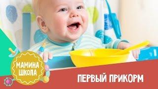 10 правил первого прикорма: это должна знать каждая мама