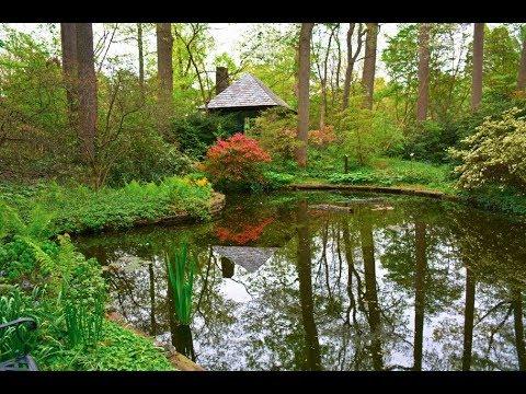 The Barnes Foundation Arboretum - YouTube