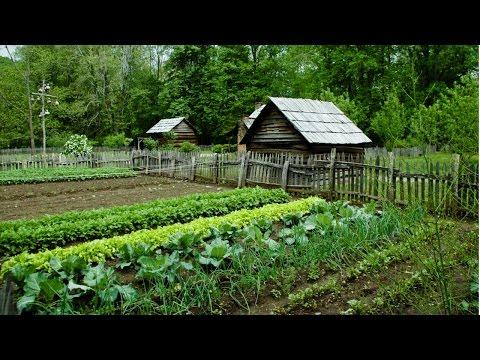 Clique e veja o vídeo Horta Caseira - Medidas Preventivas