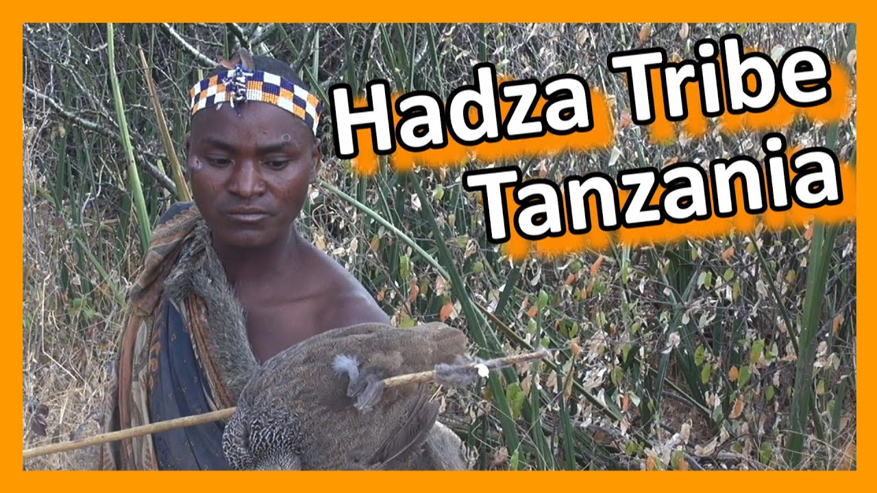 Download Tanzania - Hadza Tribe Hunters & Gatherers