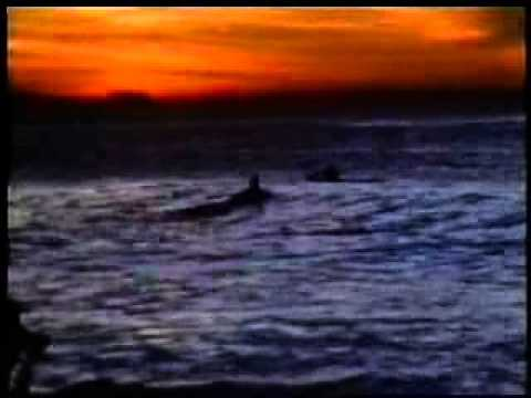 Go for it ! Larry Bertlemann  others =  Rare Surf Movie  1976