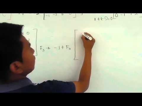 Ejercicio de una matriz escalonada y matriz reducida