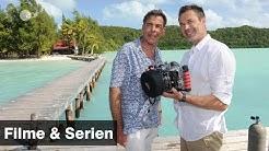 Das Traumschiff - Palau | Filme und Serien | ZDF