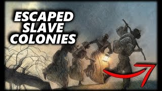 The Slaves That Got Away: History of the Maroons