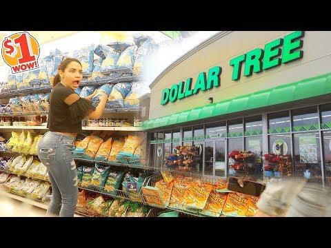 Mi PRIMERA VEZ En La Tienda Del  DOLAR 😱 NO VAN A CREER LO QUE VI 🤢 | Yarissa