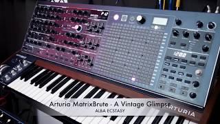 Arturia MatrixBrute - A Vintage Glimpse (one synth song)